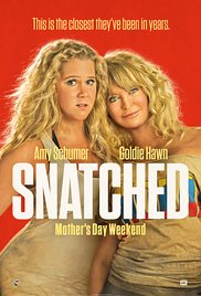 Snatched 2017 film hd subtitrat in romana